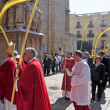 Foto Stock: Archbishop of Tarragona entering the Cathedral after the blessin