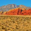 Red Rock Canyon National Conservation Area, Nevada, United State — Stock Photo #8732259
