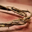 Jesus Christ crown of thorns - Stock Photo