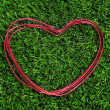 Heart-shaped wire roll — Stock Photo #9006875