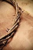 Coroa de jesus christ de espinhos — Foto Stock