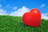 Hjärtat på gräset — Stockfoto