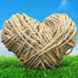Rope heart on the grass — Foto de Stock
