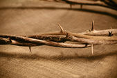 Jesus Christ crown of thorns — Stock Photo