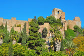 Alcazaba of Malaga, in Malaga, Spain — Stock Photo