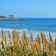 Stock Photo: Miracle Beach in Tarragona, Spain