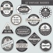 Stock Vector: Vintage badges