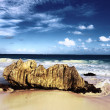 Rock of the beach — Stockfoto