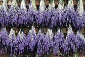 Bouquet of lavender — Stock Photo