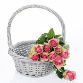 Roses in basket — Stock Photo