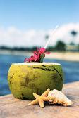 Kokosnoot tijd — Stockfoto