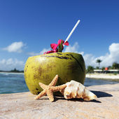Caribbean drink — Stockfoto