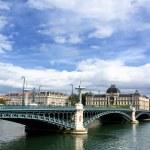 Bridge on the Rhone river — Stock Photo