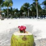 Beach drink — Stock Photo #8443279