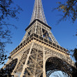 Eiffel tower in autumn - Stock Photo