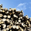 Stock Photo: Woodpile square