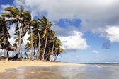 Caribbean beach with clouds — Stockfoto