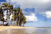 Spiaggia caraibica con nuvole — Foto Stock