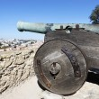 Cannon of Saint George Castle — Stock Photo #9209658