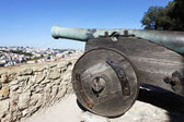 Cannon of Saint George Castle — Stock Photo