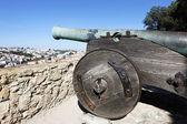 Cannon of Saint George Castle — Stock Photo
