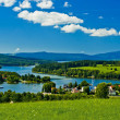 Lake on summery day — Stock Photo