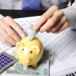 Stock Photo: Saving money in piggy