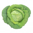 Green cabbage isolated - Stock fotografie