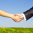 Business shaking hands against blue sky and green backgro - Stock Photo