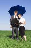 The insurance agent in the field. Sunny bright summer day — Stock Photo