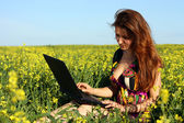 Beautiful brunette in a yellow meadow with laptop — Photo