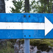 Blue Road Sign With Arrow — Stock Photo #9241065