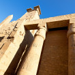 Ruins of Luxor Temple in Egypt — Stok fotoğraf