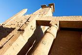Ruines du temple de louxor en egypte — Photo