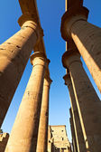 Colonnade of the Luxor temple — Stock Photo