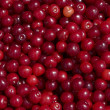 Backgroun from red cherry — Stock Photo #9847060