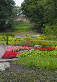 Flowers in City park in centre of Riga — Stock Photo