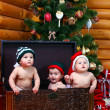 Three babies in xmas hats inside large chest — Stock Photo