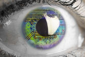 Electronic circuit reflected in human eye — Stock Photo