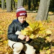 Stock Photo: Boy gathers yellow leaves in autumnal garden