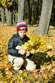 The boy gathers yellow leaves in autumnal garden — Stock Photo