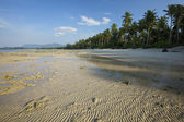 View of a tropical beach at low tide — Stock Photo