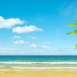 Stock Photo: Idyllic tropical beach