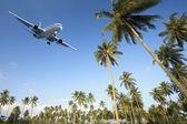 Flight to paradise — Stock fotografie
