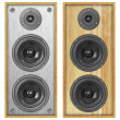 A pair of acoustic systems — Stock Photo