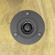 Tweeter speaker — Stock Photo