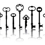 Skeleton key pictogrammen — Stockvector