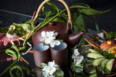 Clay japan teapot and cups. — Stock Photo