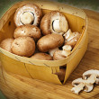 Champignon mushrooms with brown variety - Stock Photo