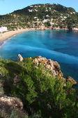 Beautiful small bay in Ibiza Spain — Stock Photo